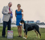 Max 15 month old New Champion 4th major win  7/12