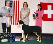 Best in National Speciality Show ~ Reno 2000