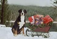Merry Christmas  Ione WA. 2003